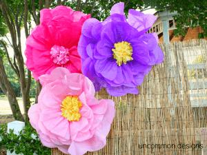 flores-gigantes