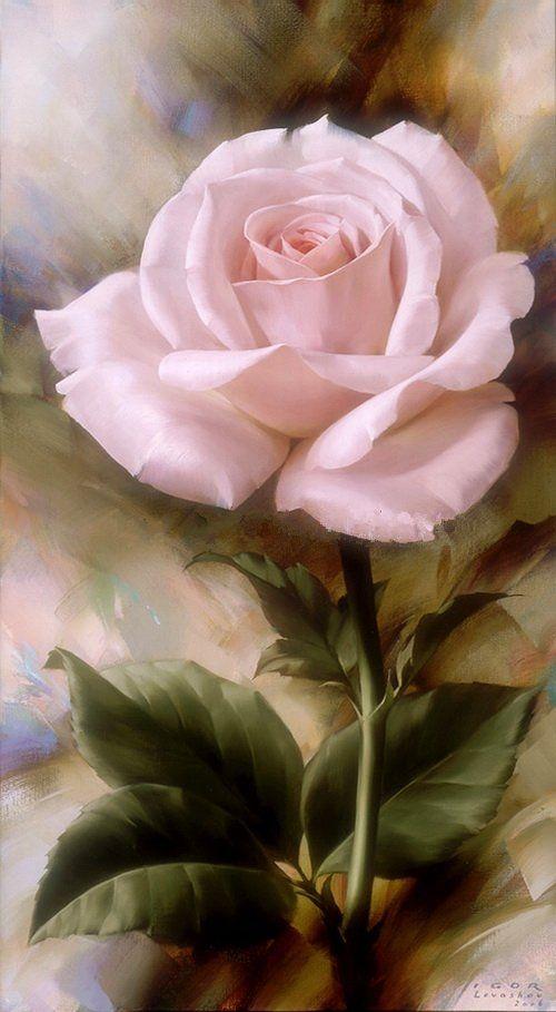 esqueja/multiplica tus propias rosas