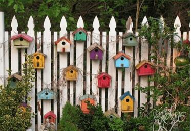 casa_de_pájaros