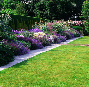 Patio de flores