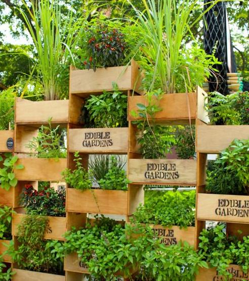 jardín urbano