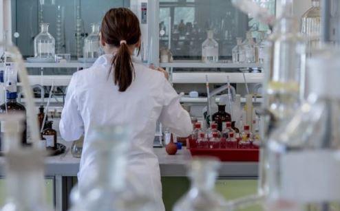 Lucha química entre plantas y virus